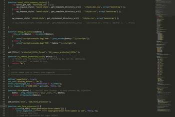 snapshot of custom code in editor